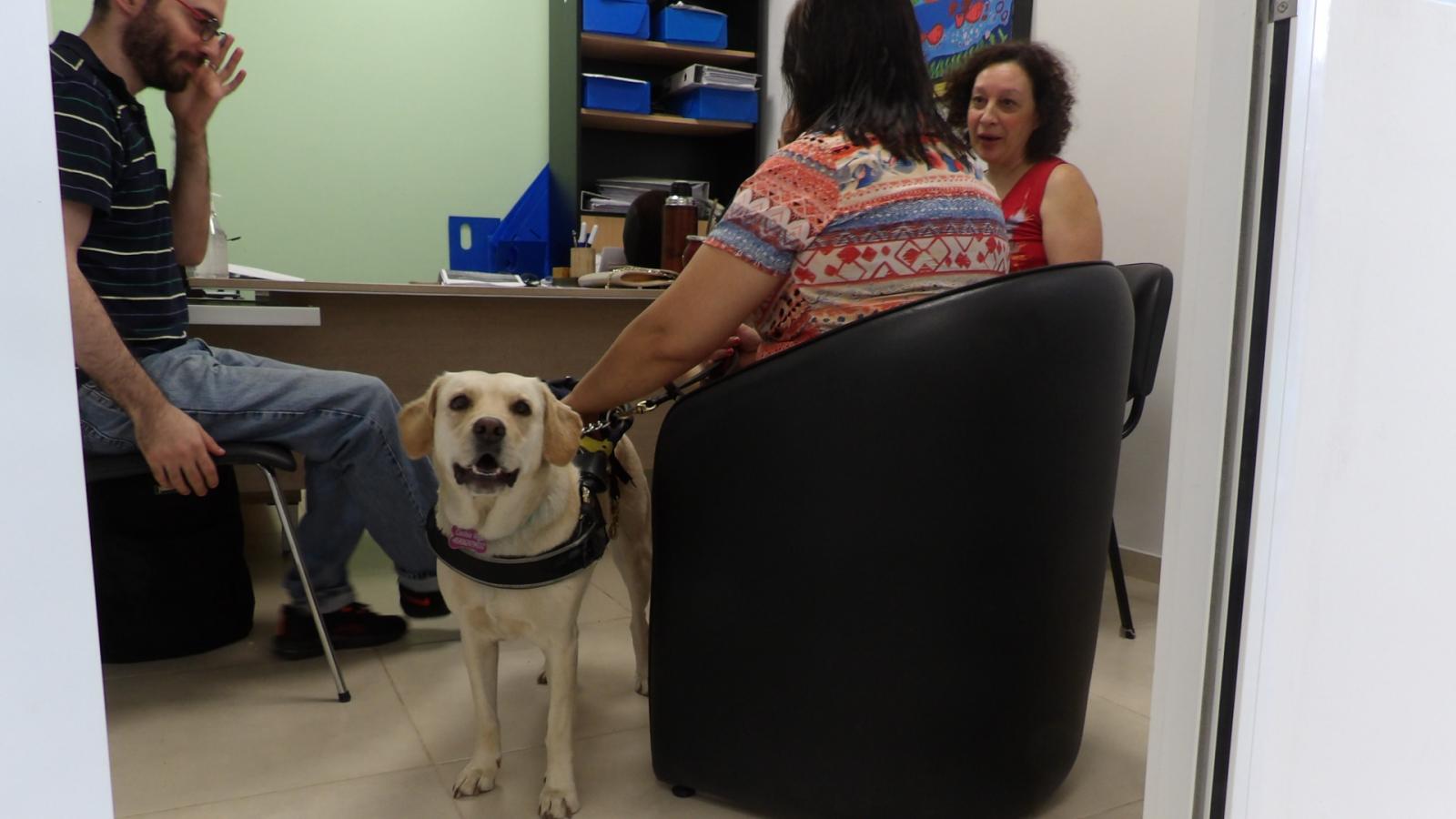 IPRODICH registró a la segunda perra guía de la provincia